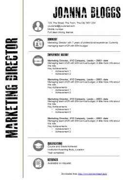 Graphical black and white CV template