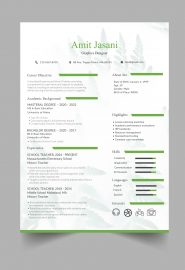 Green bar CV template