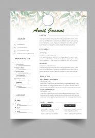 Cursive CV template