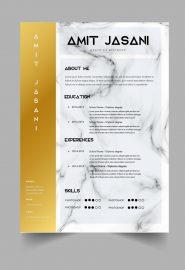 Elite CV template