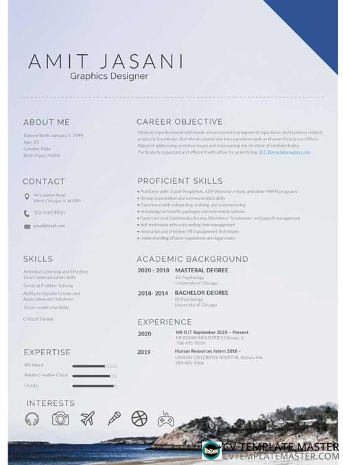 Example of a CV template