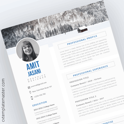CV Templates 206 Free Professional Designs In Microsoft Word Format