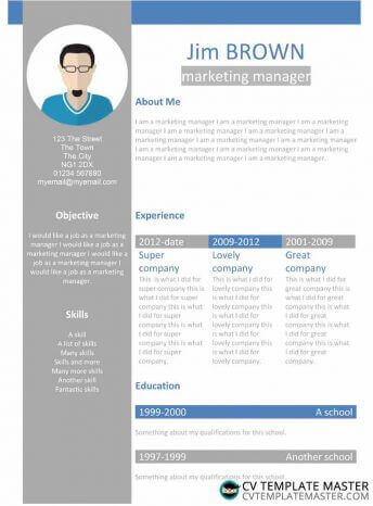 Free creative 'profile' Word CV template