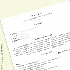 Nursing CV example: Bulleted detail CV layout in MS Word (free)