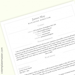 Director CV template: free 'Smart Division' design in Word