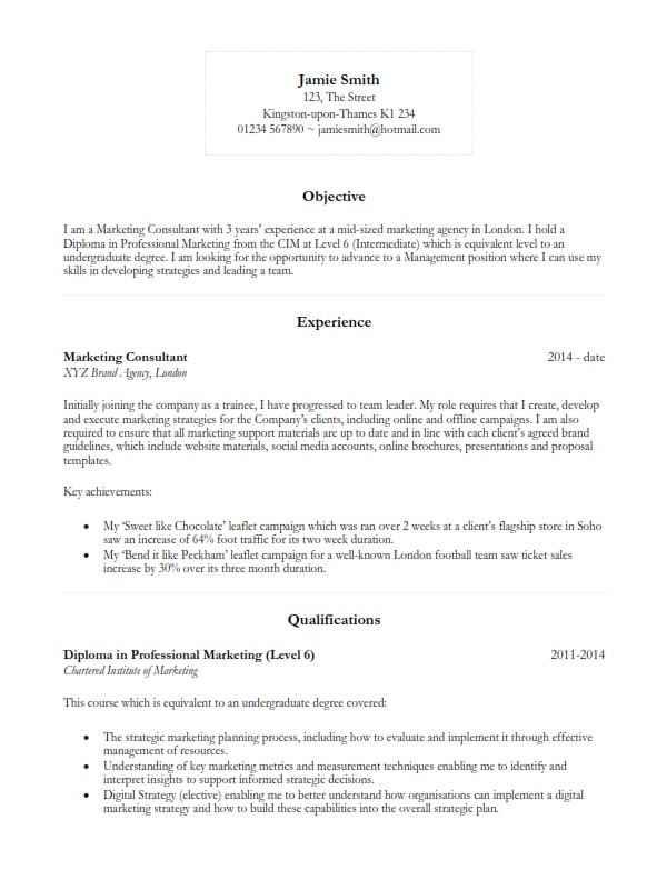 Basic CV template 2017