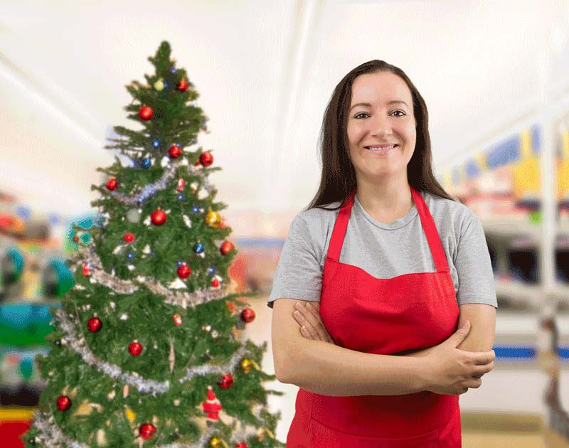 the complete guide to getting a christmas job