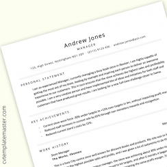 Manager CV: free two-page professional CV template in MS Word format