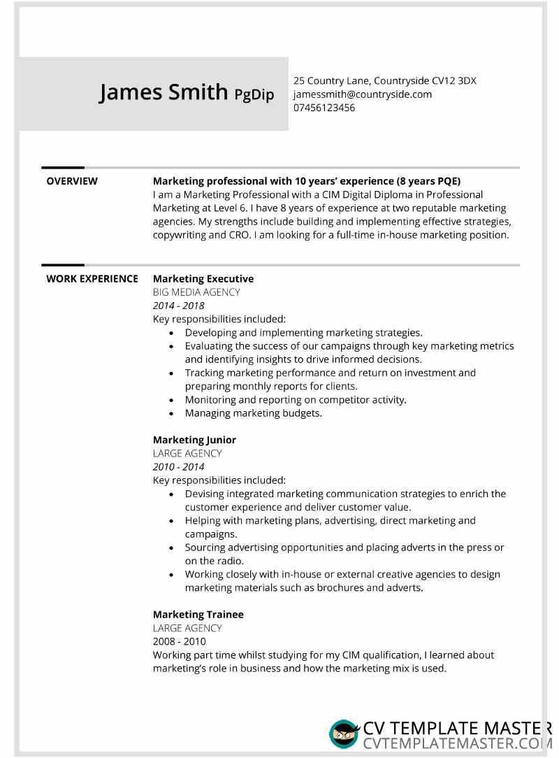 two page bordered free cv template  alternative version