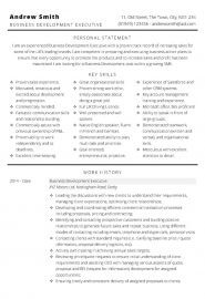 Business Development CV template - page one