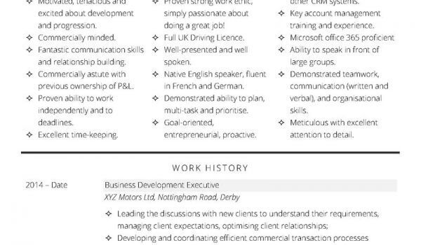 Cv Template Collection 176 Free Professional Cv Templates In Word