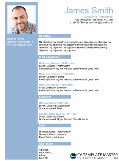 Old blue layout CV template